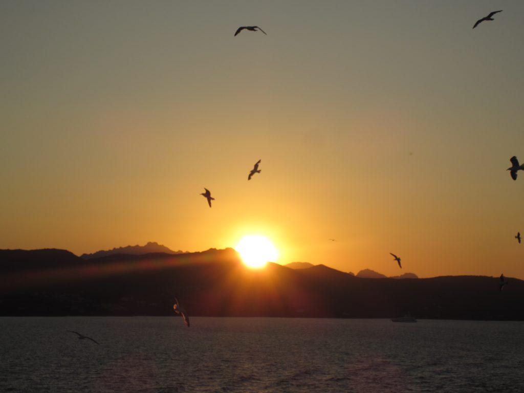 Vojagon mal di sardegna tramonto golfo aranci