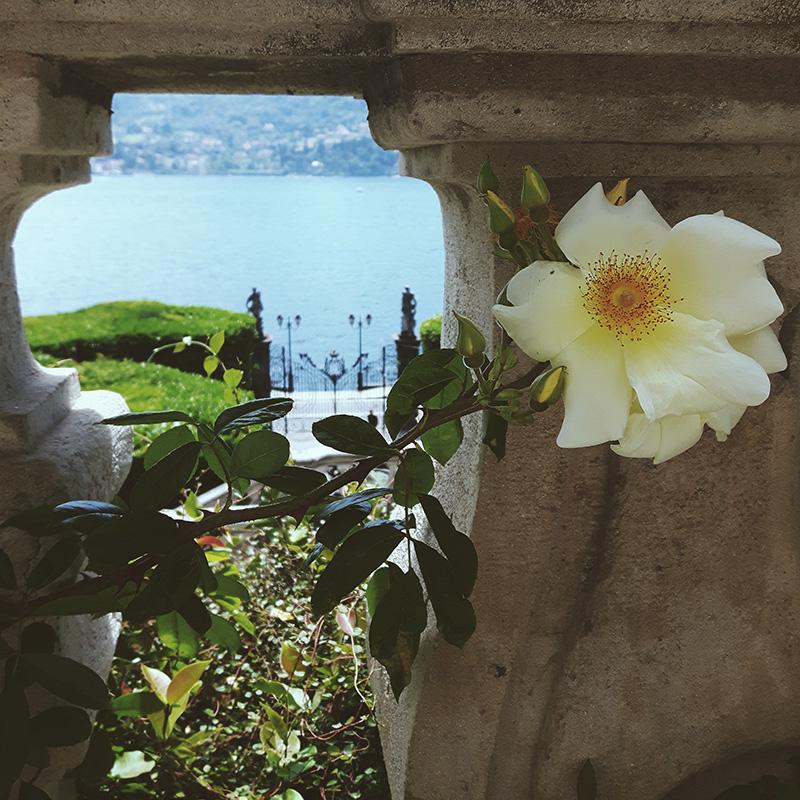 vojagon villa carlotta amore psiche balconata como lake lago di como italy italia italy landscapes