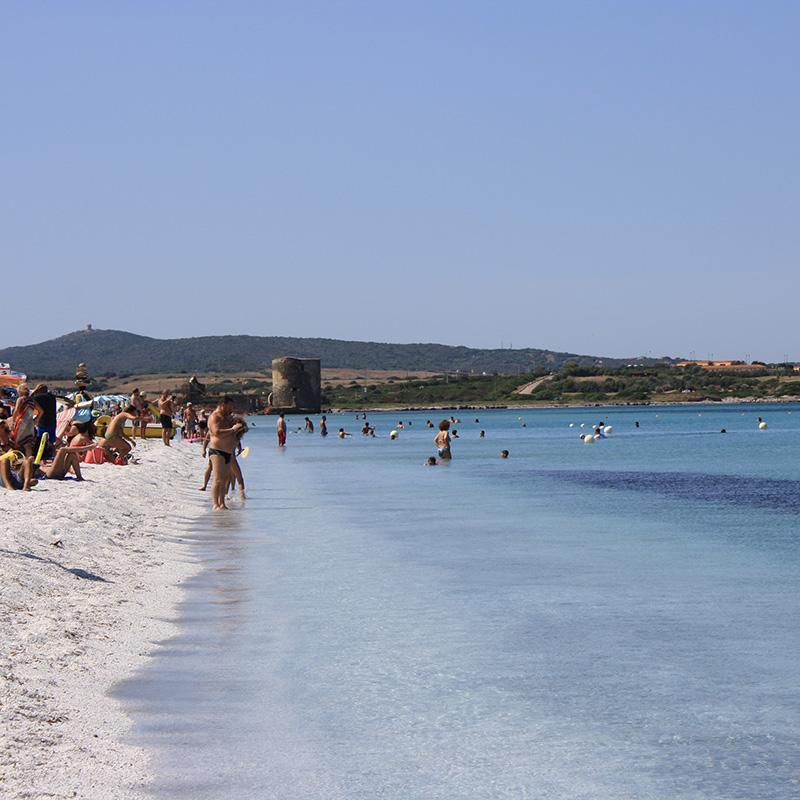migliori spiagge di stintino le saline sardegna italia mare sardinia italy asinara