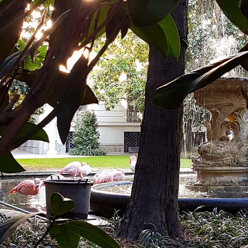 milano liberty tour vojagon italy italia villa invernizzi fenicotteri rosa Alfredo Campanini, Giovanni Battista Bossi, Giuseppe Sommaruga, Giulio Arata