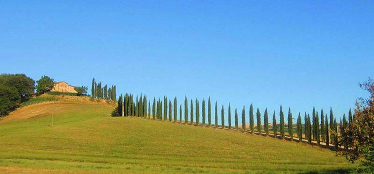 4 giorni in val d'orcia toscana brunello di montalcino montepulciano vitaleta italia italy pienza